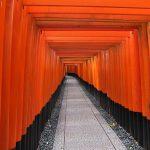 【滋賀・京都一人旅】1時間半で伏見稲荷大社のお山めぐり
