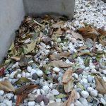 隣家から飛んでくる落ち葉を掃除