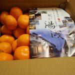 【ふるさと納税】2017年のふるさと納税 その4