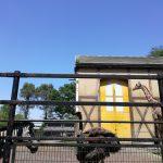 羽村市動物公園は幼児には丁度いい